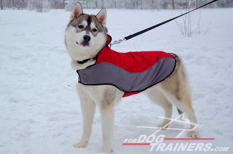 Purchase Nylon Harness Dog Coat|Velcro Dog Harness