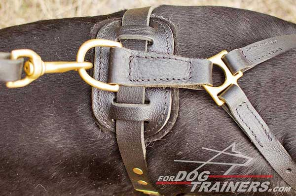 Rust proof brass fittings for leather Doberman harness
