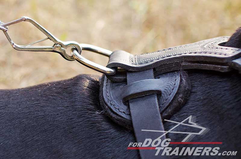 Rust proof solid nickel hardware for leather Doberman harness