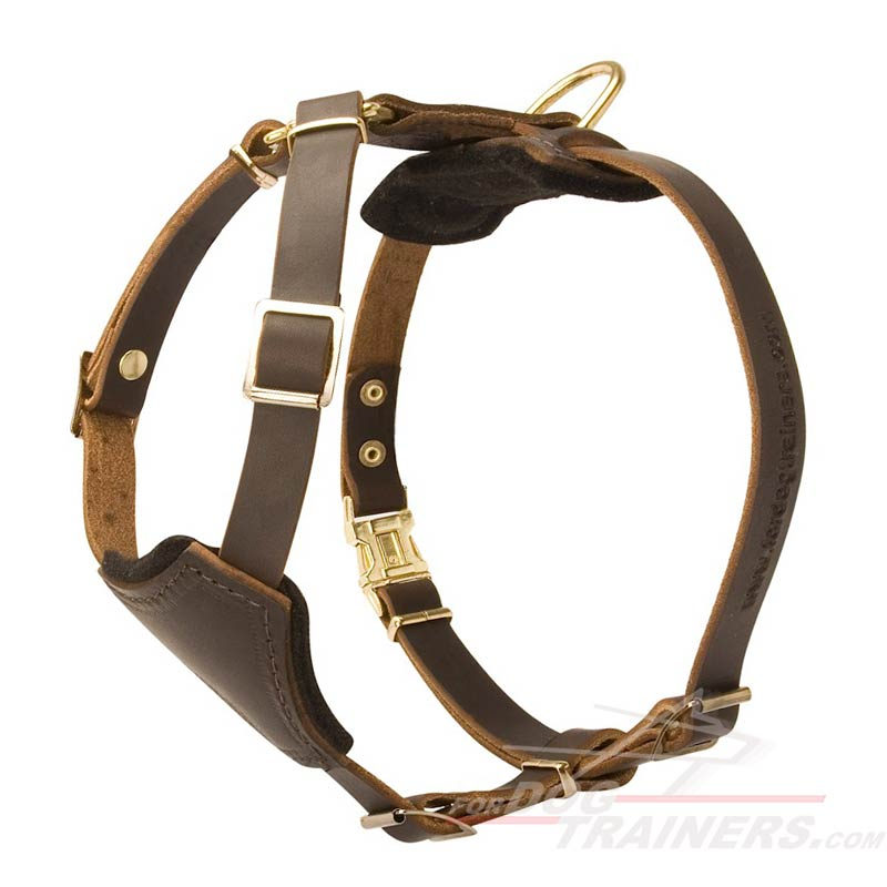 Leather dog harness H2 big buy leather dog puppy harness small breed dog harness leather dog harness at suagrazia.org