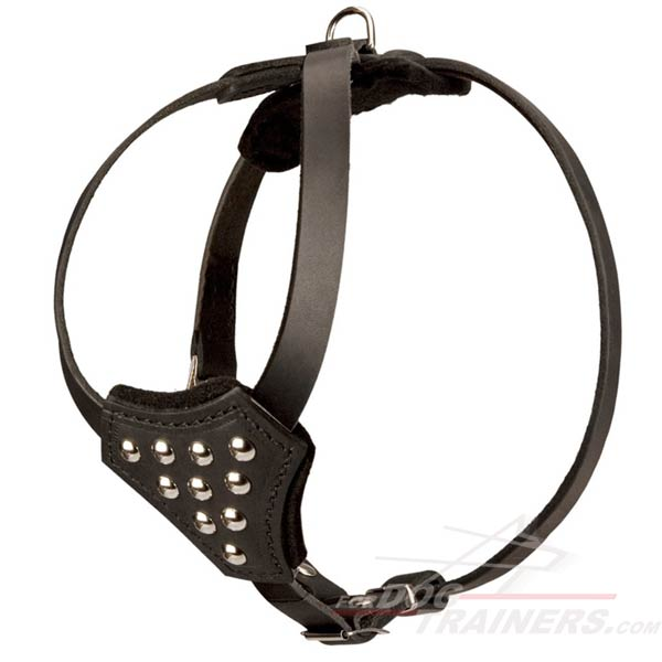 Designer Leather Dog Harness with Half Ball Studs
