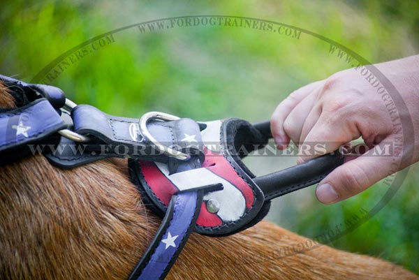 Stylish leather dog harness with buckle and D-ring