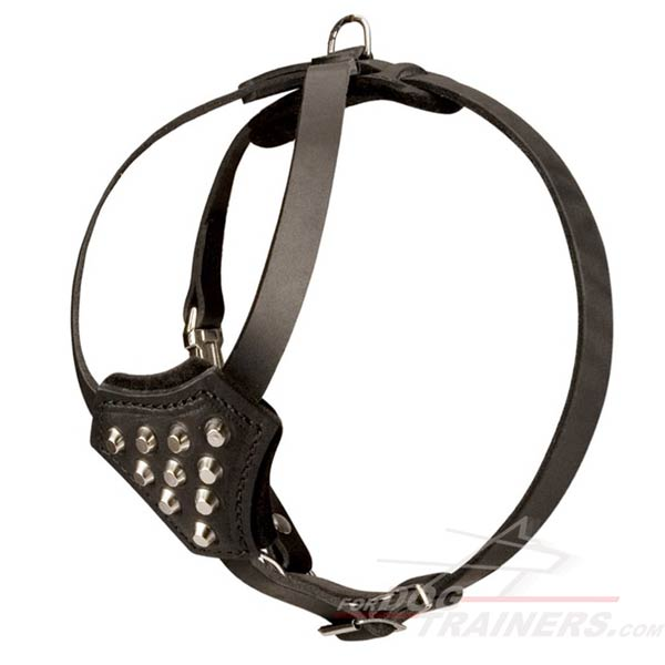 Leather dog harness for healthy growth of your puppy