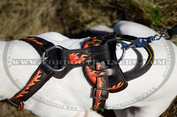 D-Ring Nickel Plated on Painted Dog Harness Leather