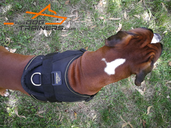 Boxer Nylon Working Dog Harness With Handle for Easy Handling