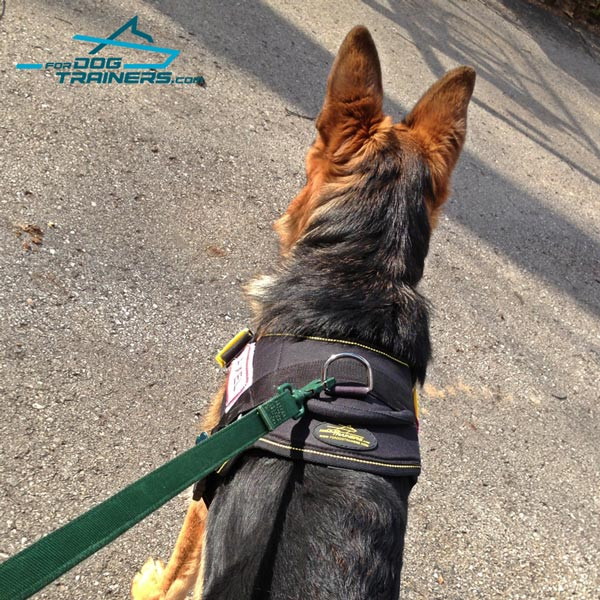 German Shepherd harness with comfortable handle for better control
