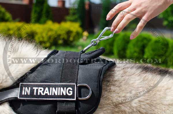 Soft and super lightweight nylon harness with ID-patches for Siberian Husky