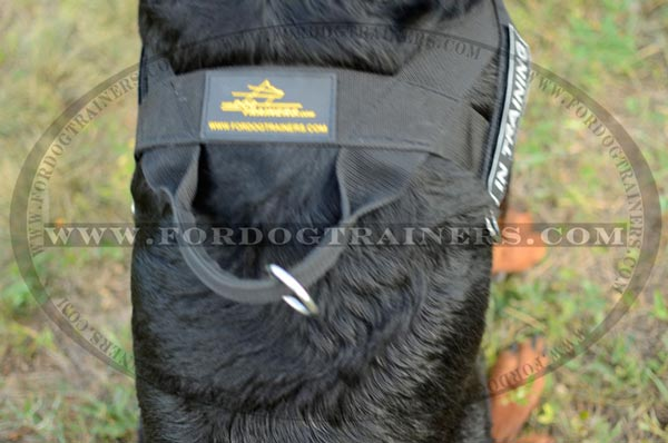 Strong Dog Harness with handle