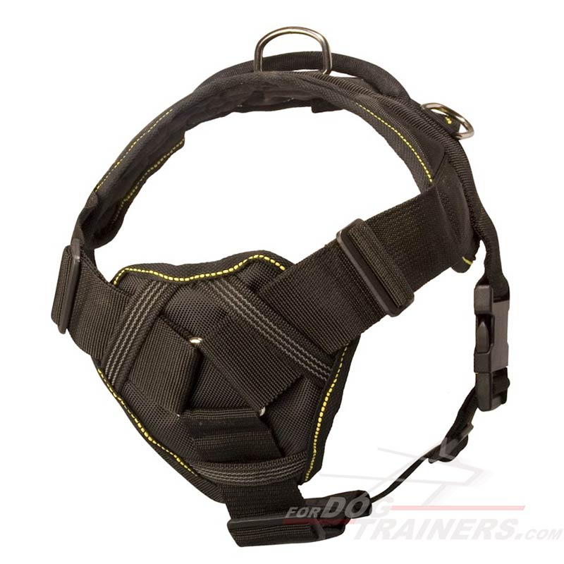 Large Leather Dog Harness