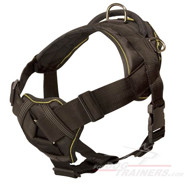 All-weather harness