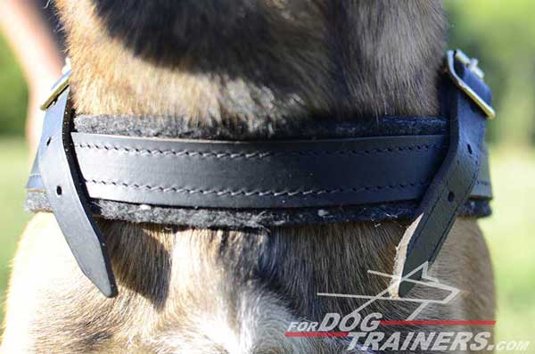 Soft Chest Strap of Leather Belgian Malinois Harness