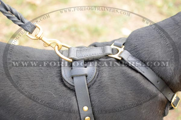 Securely stitched top D-ring for leash attachment