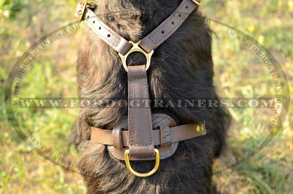 Tracking Leather Dog Harness for Riesenschnauzers
