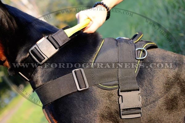 Side Rings and Plastic Buckle of Nylon Dog Harness for Doberman breed