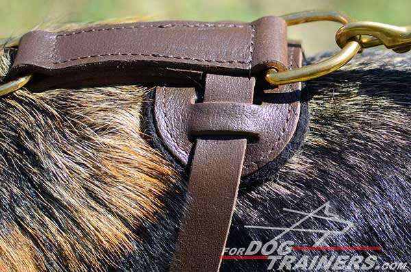 Soft Padded Back Plate of Tracking Leather German Shepherd Harness