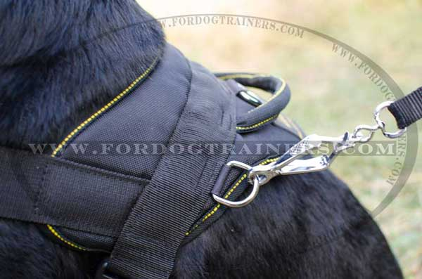 Nylon harness with comfy handle for extra comfort