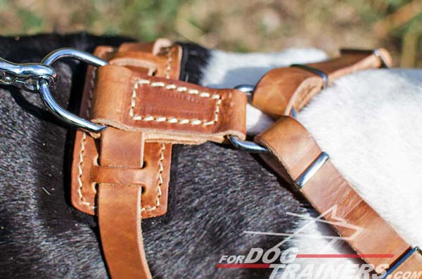 Tan Leather Harness Back Plate with Ring for Leash Attachment