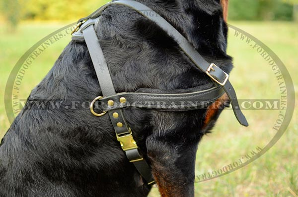 Leather tracking dog harness felt padded on straps