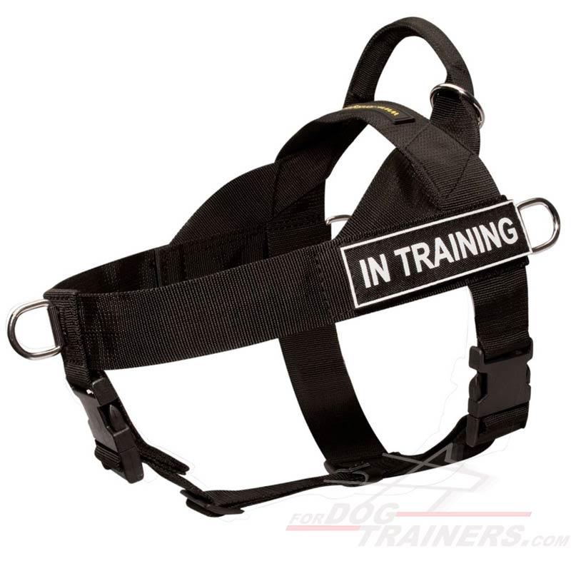 Best Nylon Dog Harness For Pulling