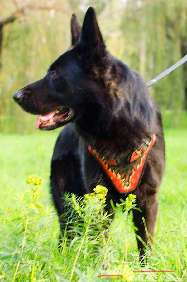 Leather German Shepherd Harness Made to Order by Skilful Specialists
