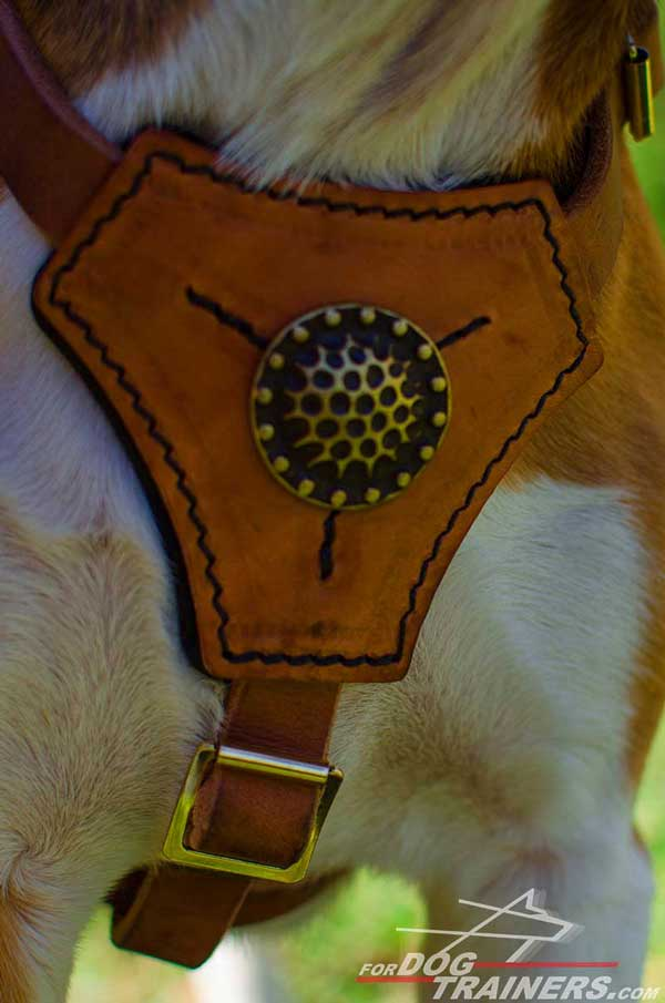 Tan Leather Chestplate Neatly Cut with Decoration in The Center