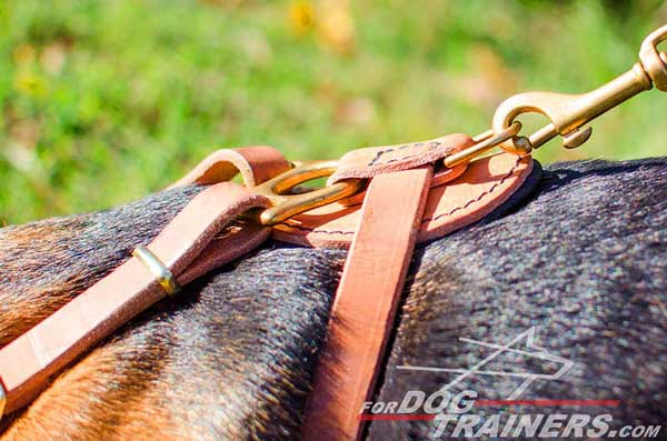 Tan Dog Harness Leather Correctly Designed To Create Maximal Comfort for the Pet