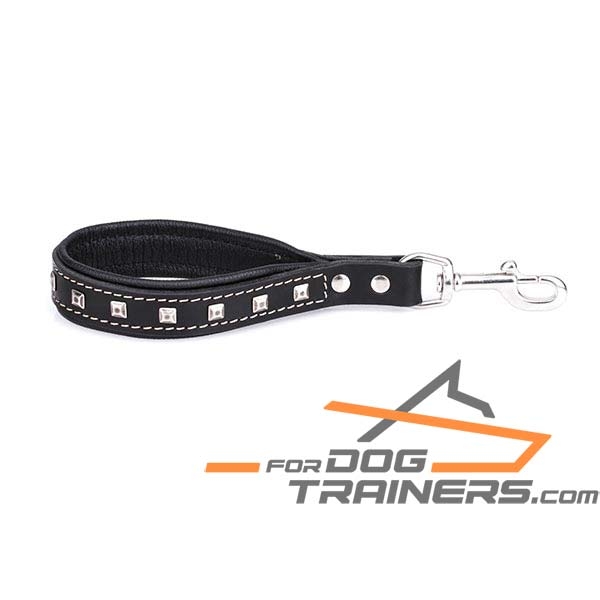 Leather Dog Leash with Unique Decorations