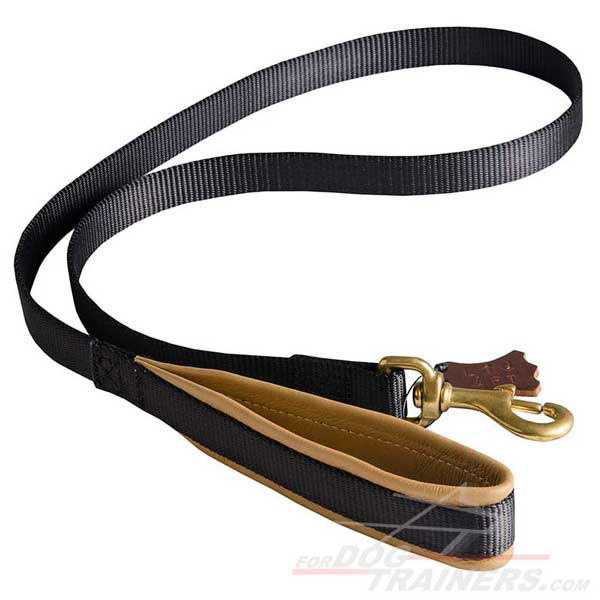 Practical nylon dog leash