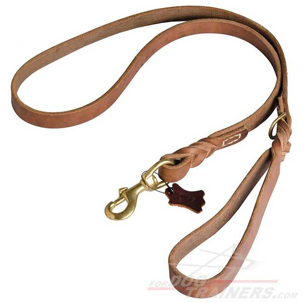 Smooth Waxed Leather Dog Leash