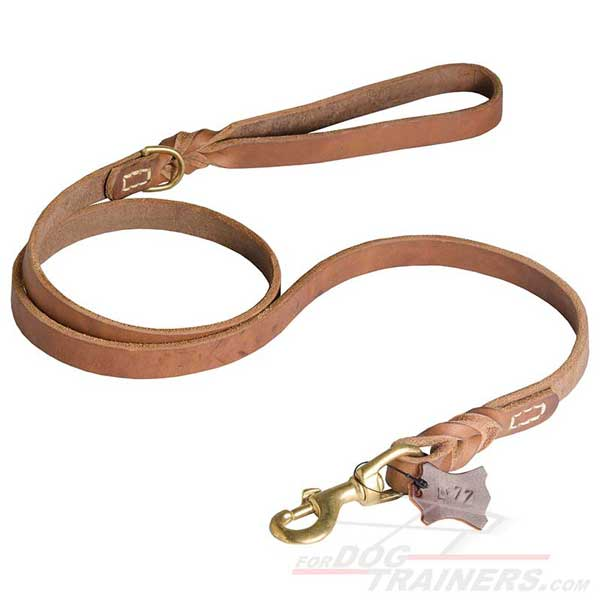 Training Leather Dog Leash