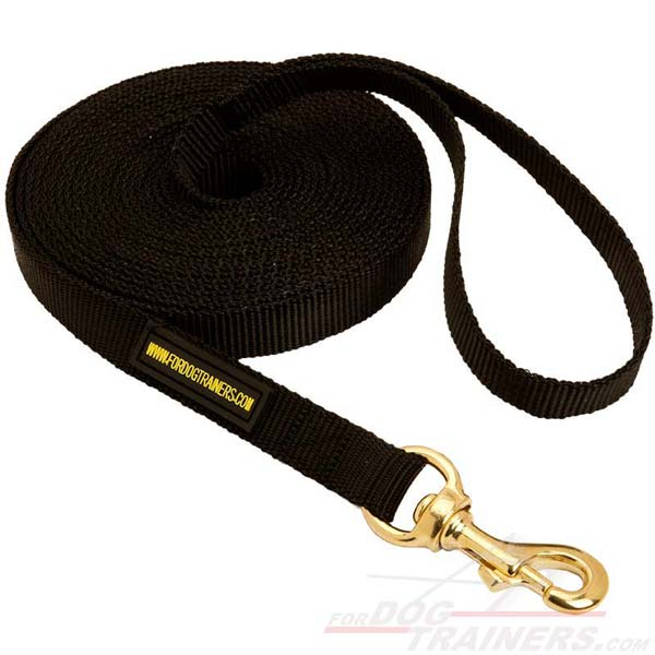 Reliable Any Weather Nylon Leash for Active Dogs