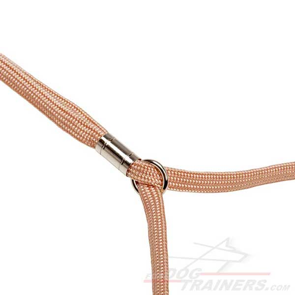Stopper and ring on dog show lead leash set