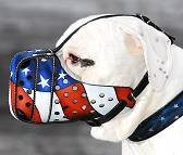 "Hand painted by our artists leather Muzzle ""Dondi"" Plus - American Pride - product code m77American Pride"