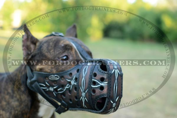 Hand Painted Leather Dog Muzzle for Dogs