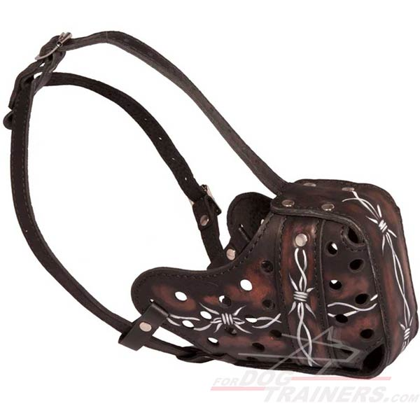 Barbed wire leather muzzle