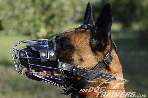 Easy Adjustable Wire Basket Belgian Malinois Muzzle