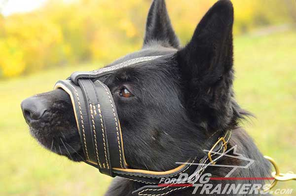 Padded Leather Muzzle for GSD