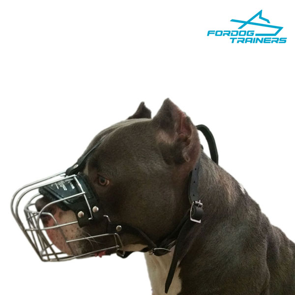 Wire Basket Amstaff Muzzle  - Easy to Adjust