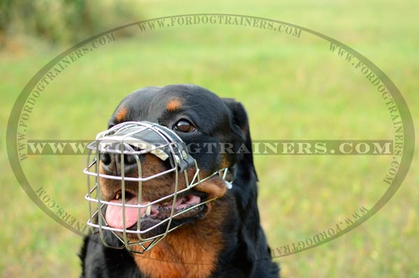 Metal Basket Dog Muzzle for Easy Breathing