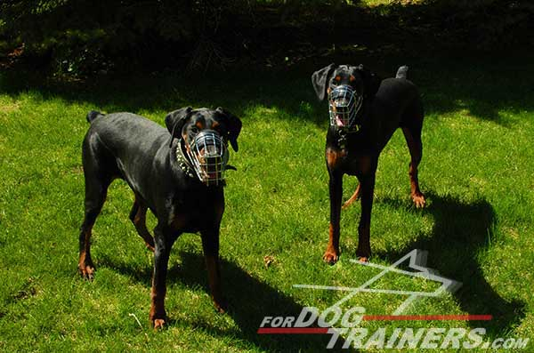 Adjustable Wire Basket Doberman Muzzle
