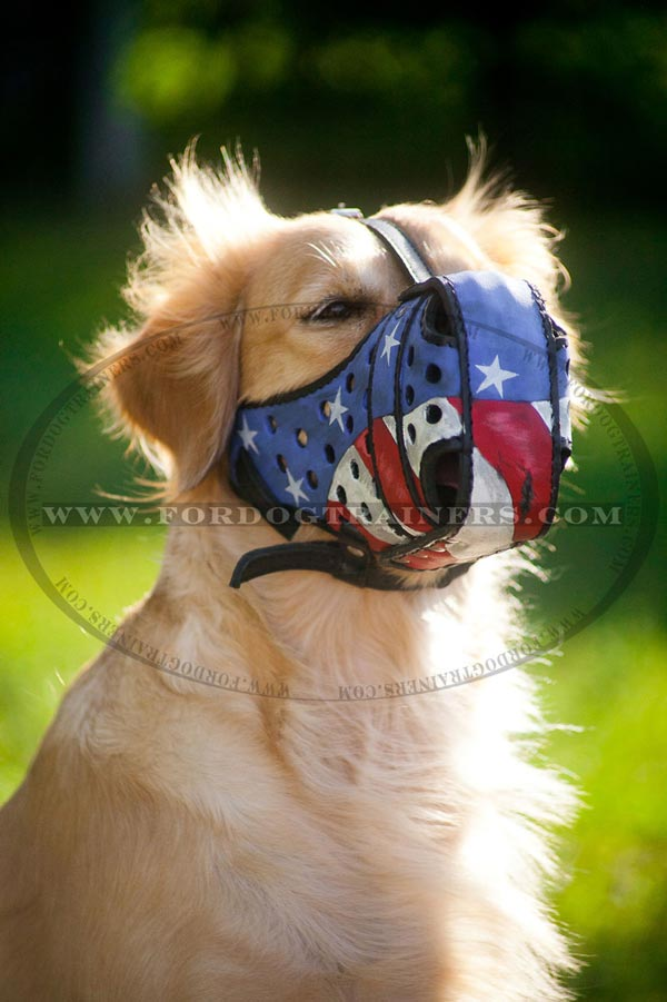Dogs are happy to wear this muzzle