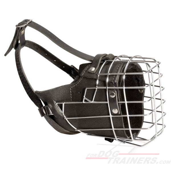 Hard dog basket basket muzzle for hard dog training