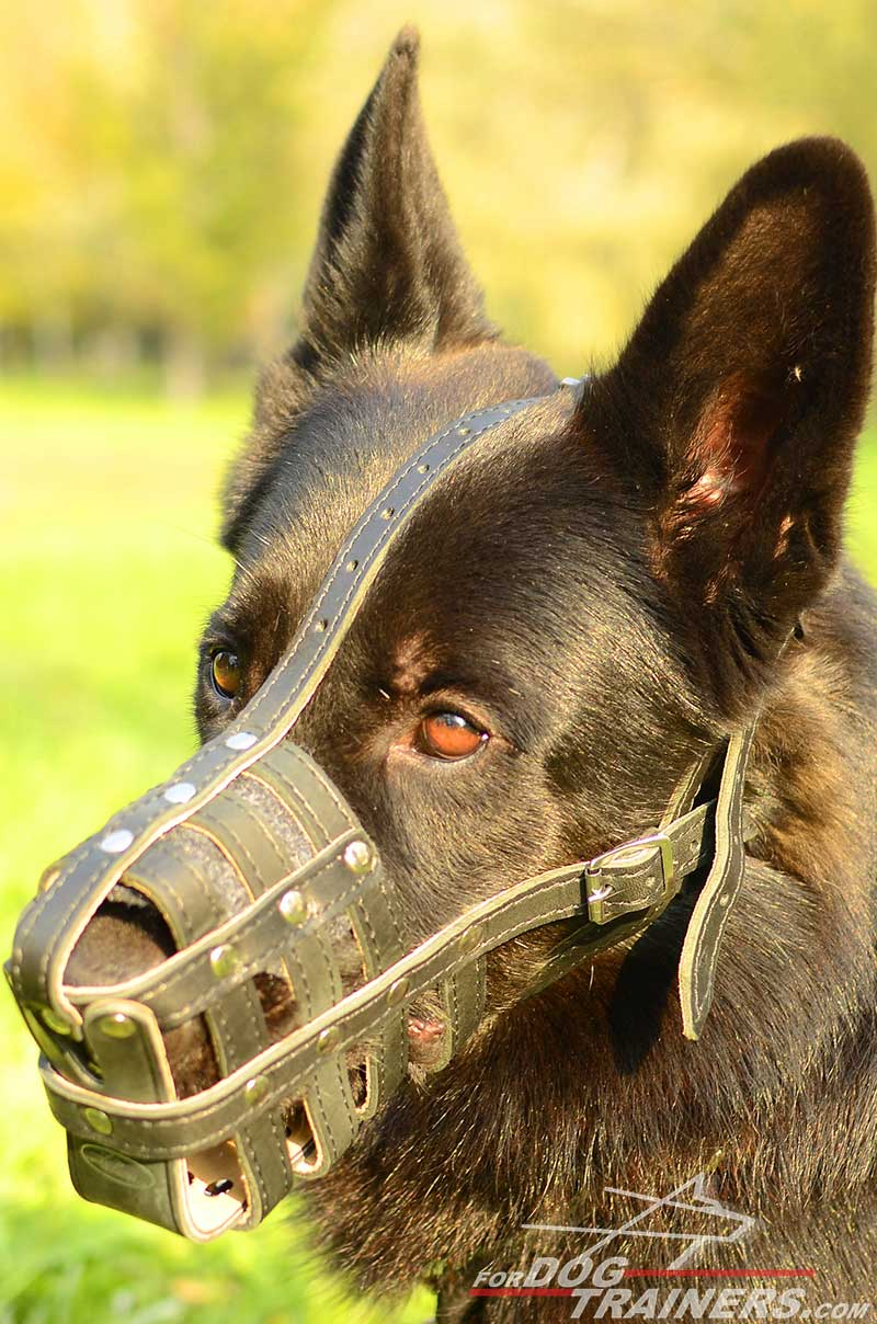 Dog Muzzle Leather Cage Spacious for German Shepherd