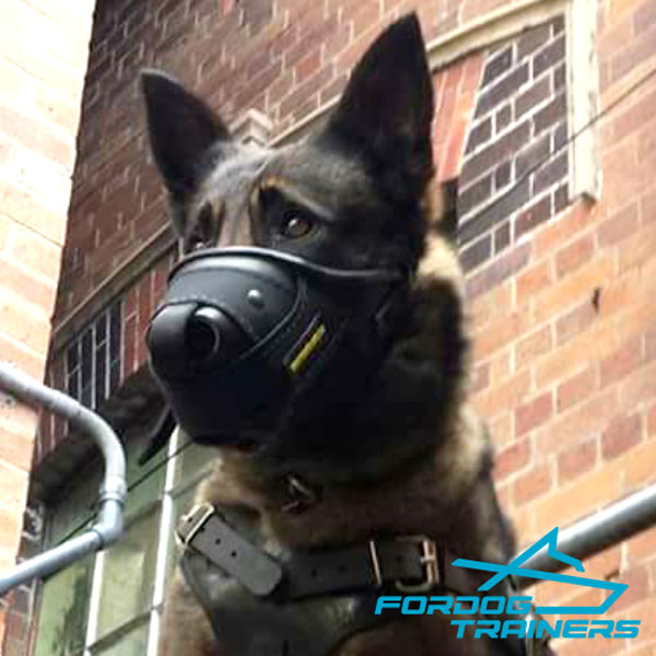 Leather&Nylon German Shepherd Muzzle for Police Training