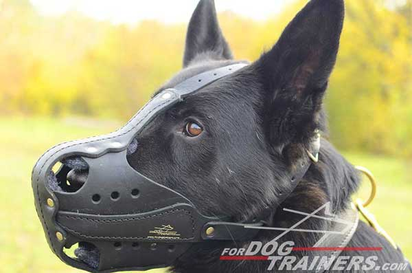 Durable Leather German Shepherd Muzzle Agitation Training Padded