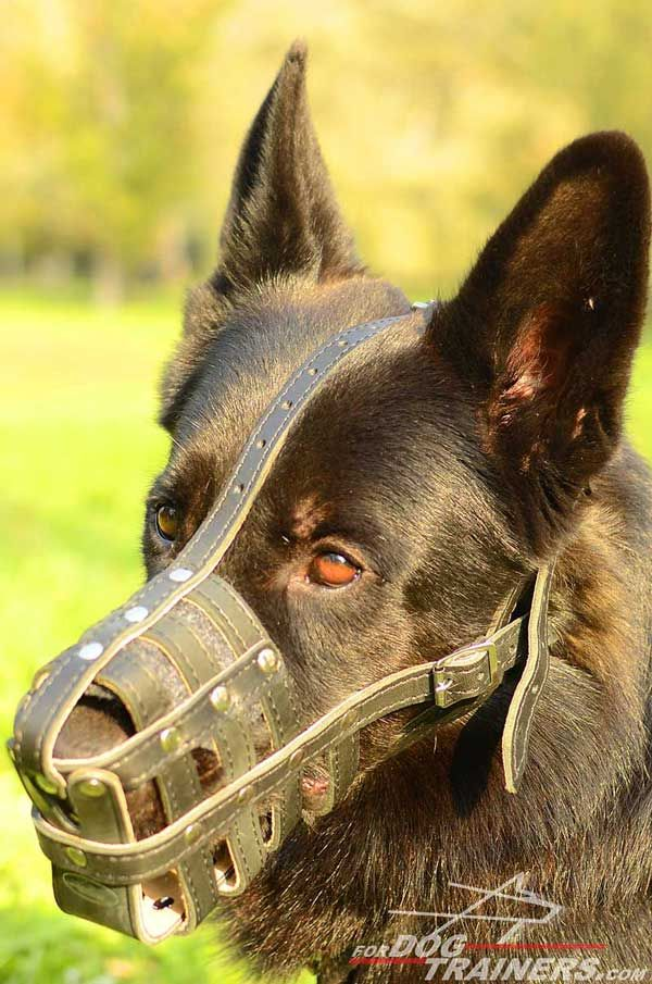 German Shepherd Muzzle Leather Padded for Maximum Comfort