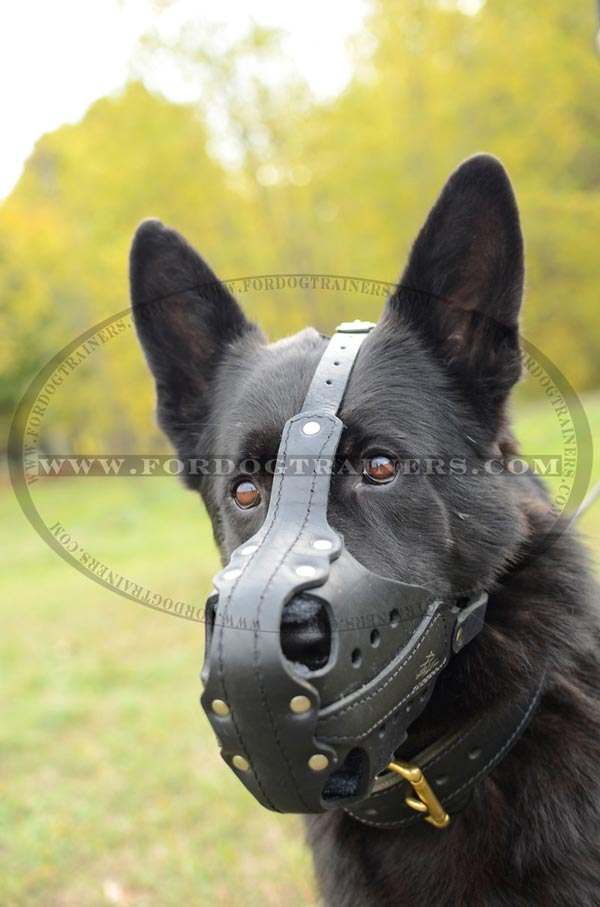 Leather GSD Muzzle for Attack Work
