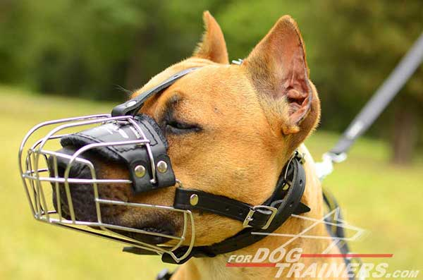 Soft nose padded wire basket muzzle for Pitbull