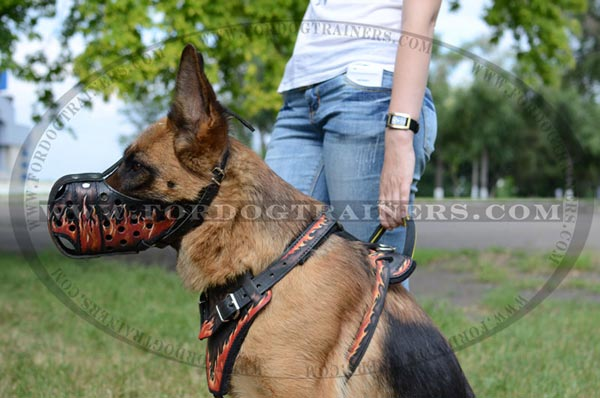 Walking in style dog muzzle