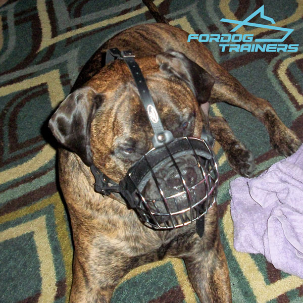 Easy to Adjustable Wire Basket Dog  Muzzle